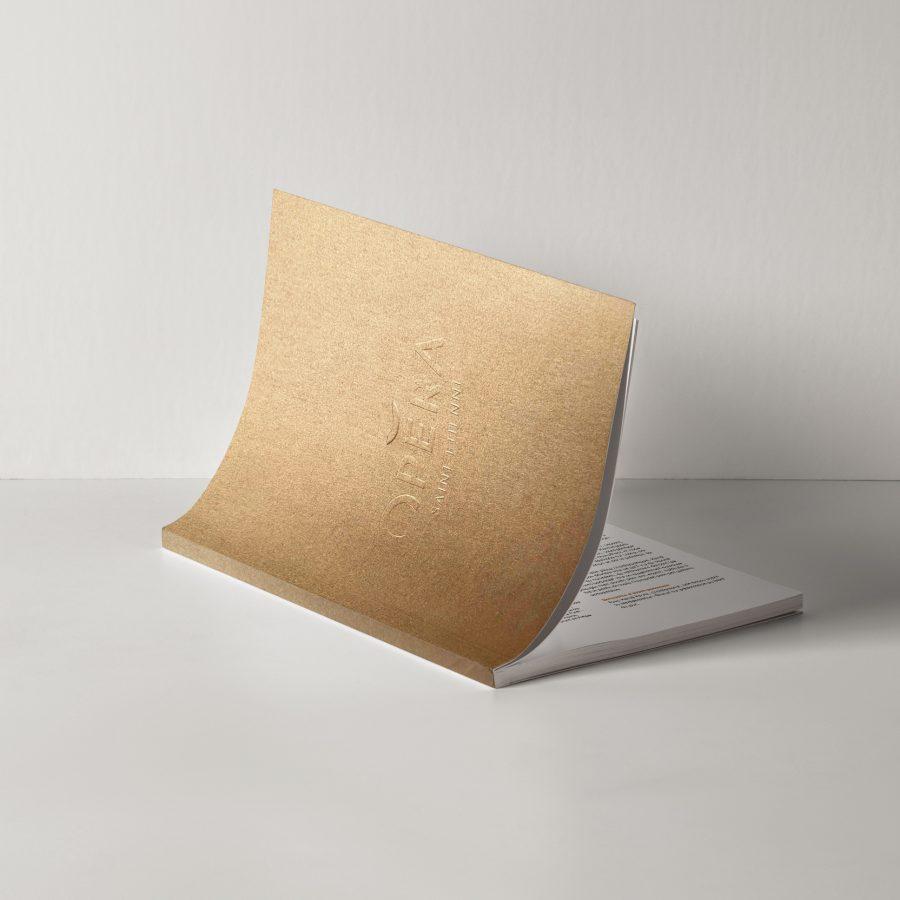 matt-design-agence-publicite-campagne-opera-saint-etienne-21-22-end